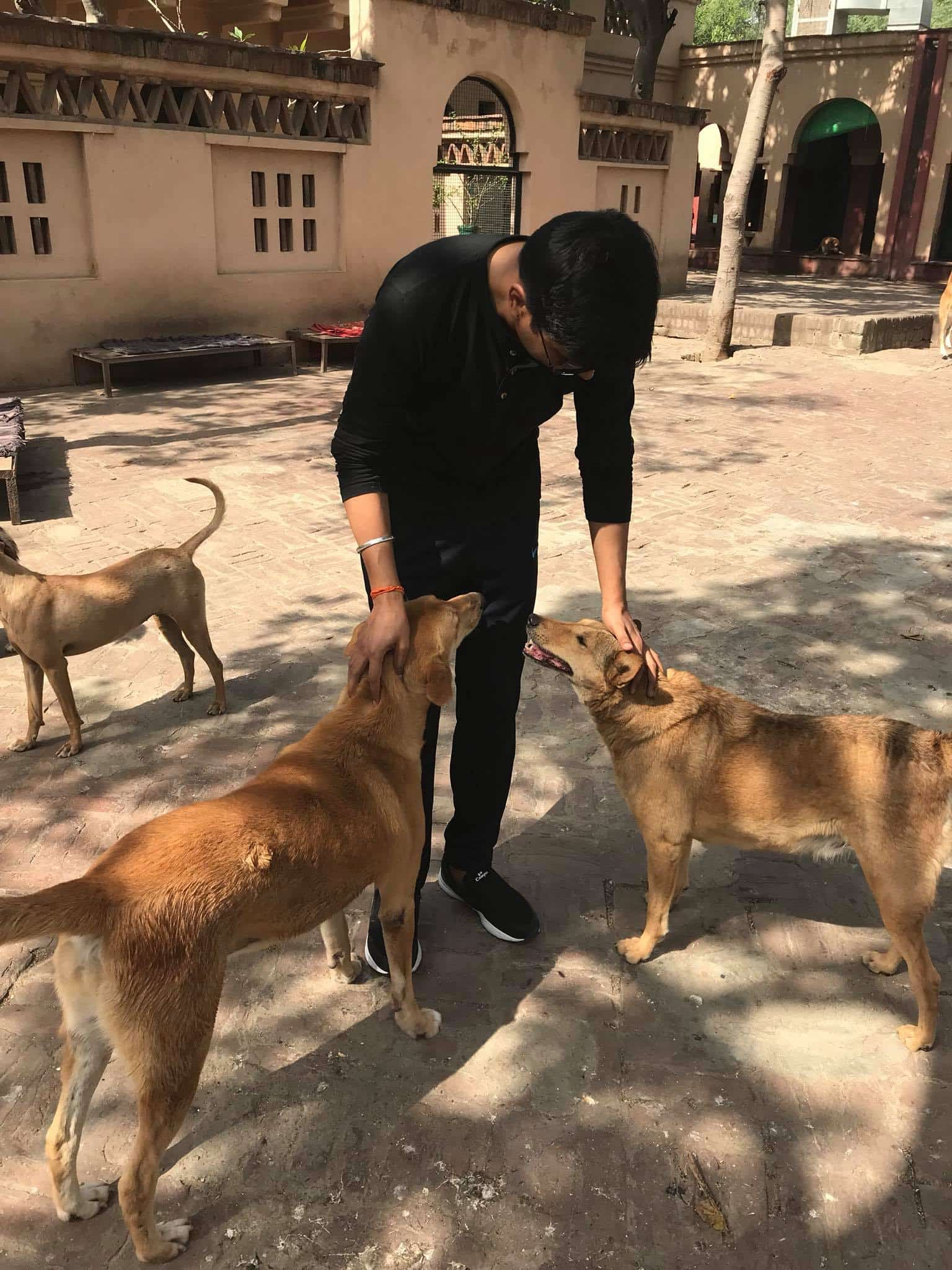 Hitesh with our friends from the Animal Kingdom